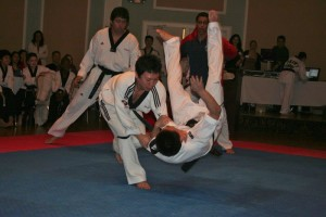 Teen Adult Martial Arts in Stamford at Master Na's Traditional Martial Arts